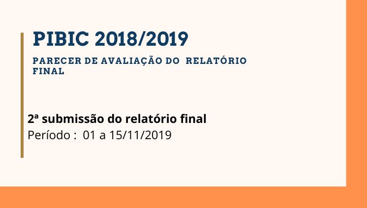 PIBIC 2018/2019 - Parecer do Relatório Final